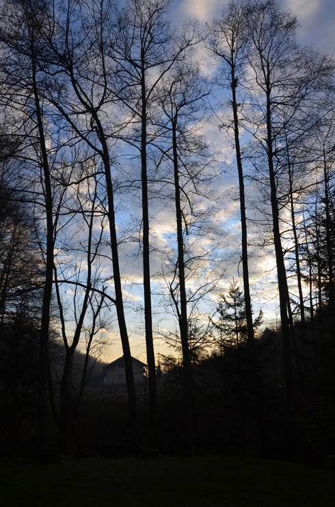 Kroz Likin objektiv/ Ta divna priroda