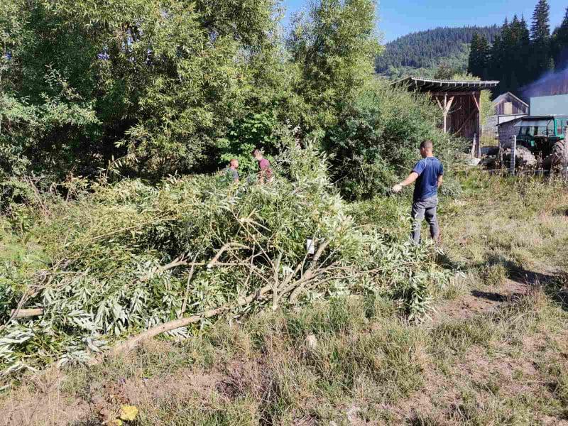 (foto) preko 70 učesnika čisti mjesnu zajednicu vitovlje